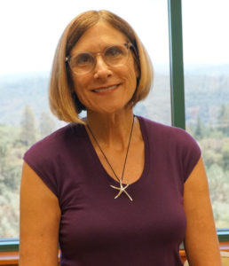 Susan Landes